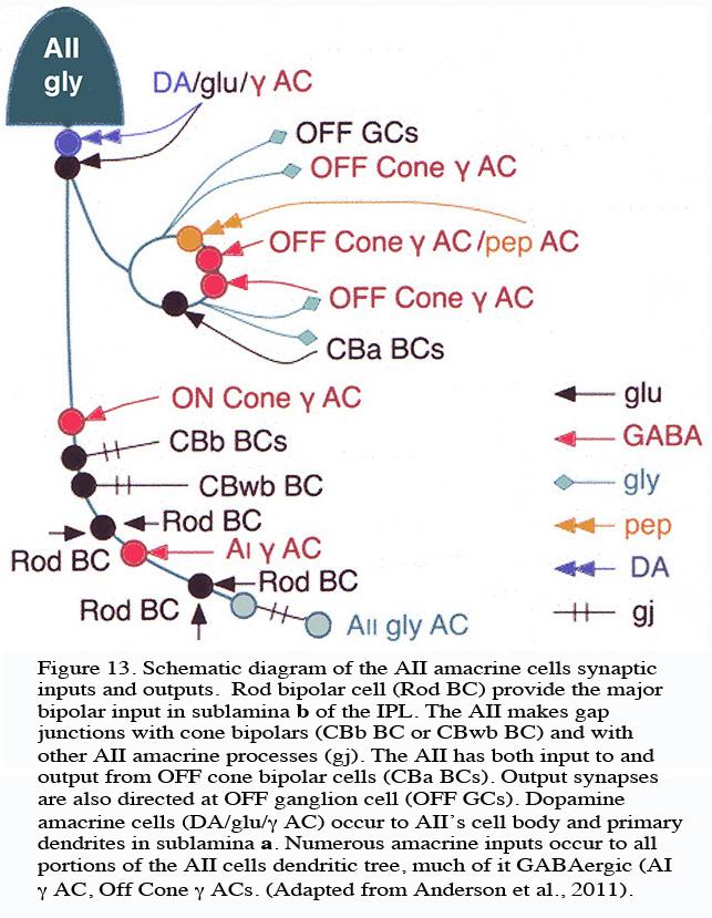 topcon wiring diagram hvac diagrams elsavadorla