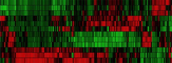 Gene heat map