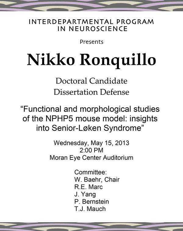 Phd thesis defense