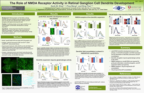 Scientific poster example